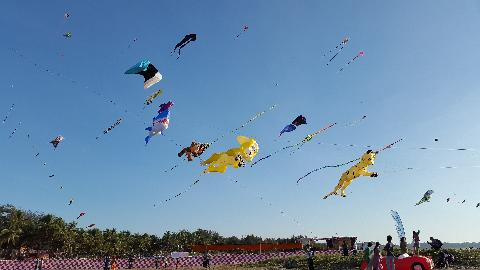Kite Festival in Goa
