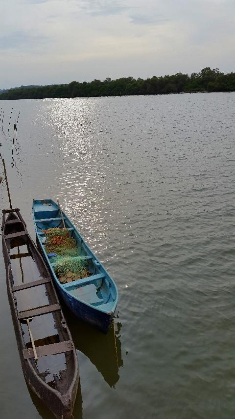 Goa Backwaters